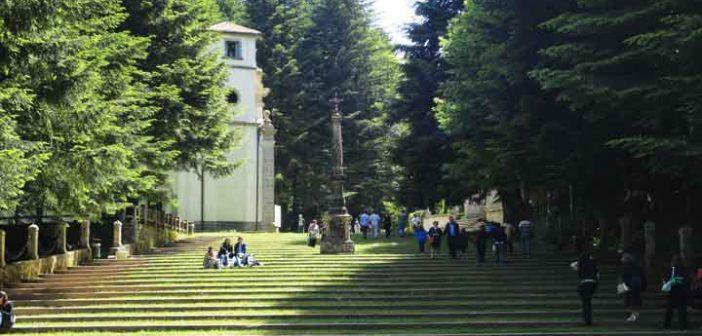 Serra San Bruno Scala Calabria Contatto