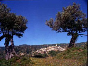 Badolato Borgo Medievale Cielo Blu Calabria Contatto