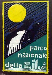 Parco Nazionale Della Sila Logo Calabria Contatto