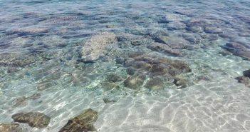 Soverato Acqua Trasparente Calabria Contatto