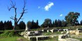 Locri Tempio Marasà Calabria Contatto