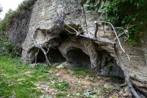 Mesoraca Grotte Calabria Contatto