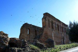 Parco Scolacium Cattedrale Roccelletta Borgia Calabria Contatto