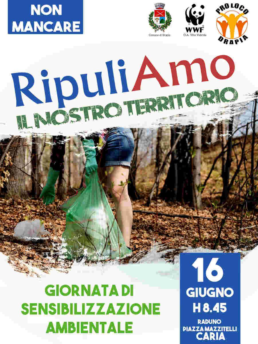 Giornata Di Sensibilizzazione Ambientale Calabria Contatto