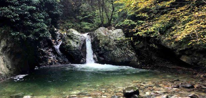 Riserva Naturale Valli Cupe Calabria Contatto