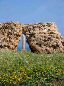 Capo Colonna Crotone Prospettiva Calabria Contatto