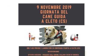 Cleto Giornata Cane Guida Calabria Contatto