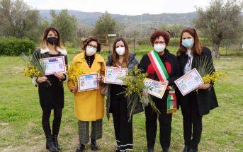 Piantiamo Mimosa Donne Badolato Calabria Contatto