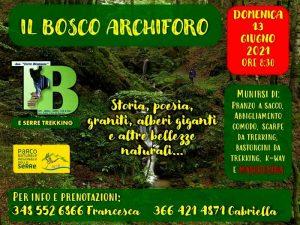 Bosco Archiforo Locandina Terre Bruniane Serra San Bruno Calabria Contatto