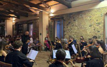 Arte Musica Orchestra Camera Insieme Calabria Contatto