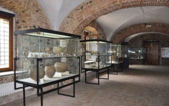 Gioia Tauro Museo Metauros Sala Calabria Contatto