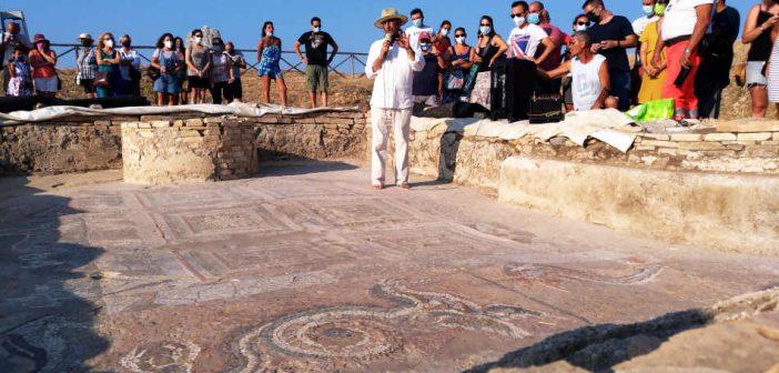 Archeologo Cuteri Parco Kaulon Mosaico Sala Calabria Contatto