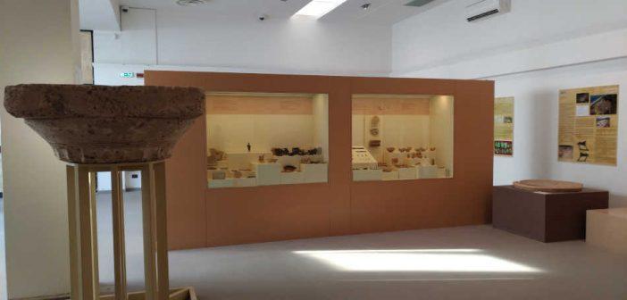 Museo Antica Kaulon Calabria Contatto