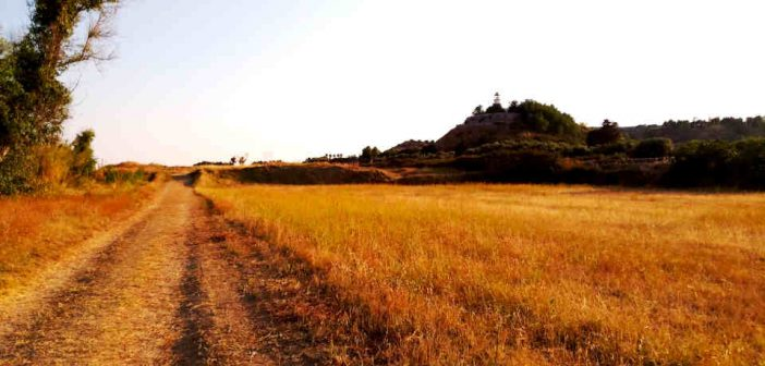 Sentiero Parco Archeologico Antica Kaulon Calabria Contatto