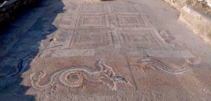 Sala Draghi Delfini Parco Archeologico Kaulon Calabria Contatto